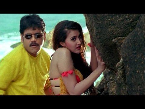 Seetaramaraju Movie || Ecstacy Privacy Video Song || Nagarjuna,Sakshi Shivanand