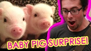The cutest video you'll ever see. Check out more awesome videos at BuzzFeedVideo! http://bit.ly/YTbuzzfeedvideo GET MORE BUZZFEED: ...