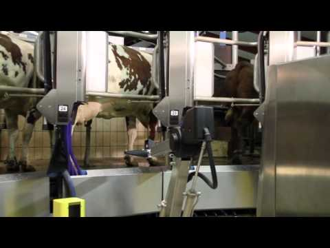 The world's first automatic milking rotary system AMR™