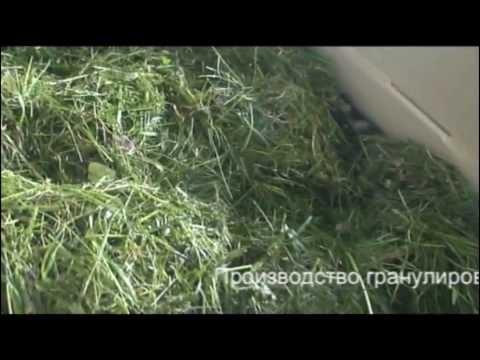 Гранулы из травы видео
