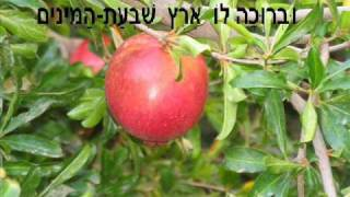 "Download Lagu Yaacov Maoz, קידוש לט""ו בשבט, יעקב מעוז Mp3"