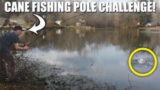 Video FISHING FOR BASS WITH A CANE POLE CHALLENGE! | DALLMYD MP3, 3GP, MP4, WEBM, AVI, FLV Januari 2019