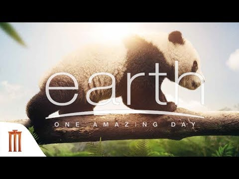 Earth: One Amazing Day | หนึ่งวันมหัศจรรย์สัตว์โลก - Official Trailer [พากย์ไทย]