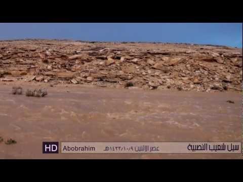 حوطة بني تميم تحت المطر في شهر أغسطس 2012 HD