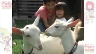 小川村山羊節伝説