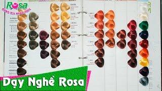 Nhuộm tóc - Tìm hiểu về màu thuốc nhuộm trước khi thực hành