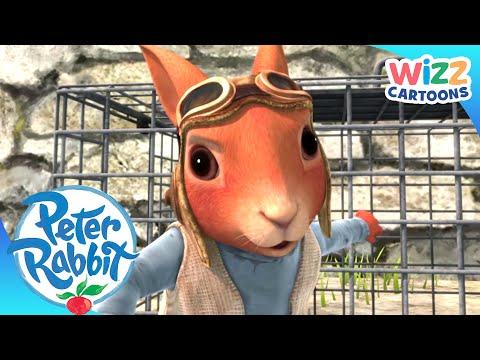 Peter Rabbit | Squirrel Rescue! | Action-Packed Adventures | Wizz Cartoons