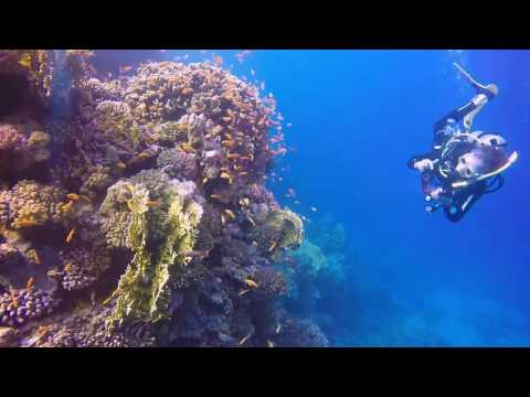 Scuba diving Marsa Shagra November 2016