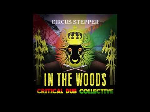 Critical Dub Collective - Circus Stepper