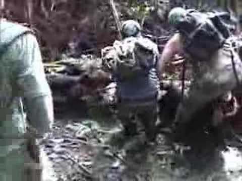 Knife Wild boar hunting in Hawaii with dogs