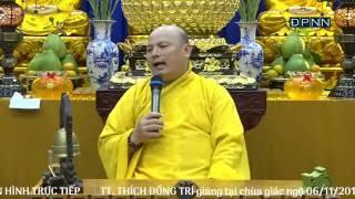 TT. THÍCH ĐỒNG TRÍ - Tầm Sư Học Đạo   06/11/2016