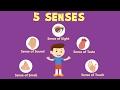 Human Sense Organs | Learn about five Senses