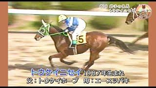 #08 岩手の名馬トウケイニセイ