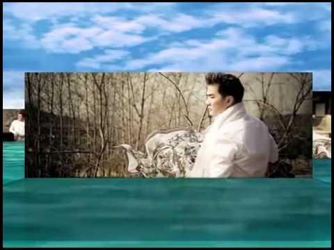 Liên khúc ca khúc hay nhất của Đàm Vĩnh Hưng