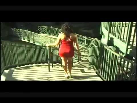 La Cumbia Rebaja - Aniceto Molina (Video)