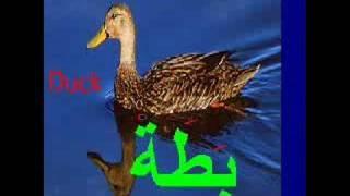 Learn Arabic with Khaled 4