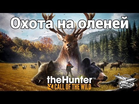 Стрим - theHunter: Call of the Wild - Охота на оленей (видео)