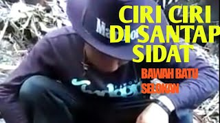 Video Ciri ciri Mancing sidat besar di bawah batu MP3, 3GP, MP4, WEBM, AVI, FLV November 2018