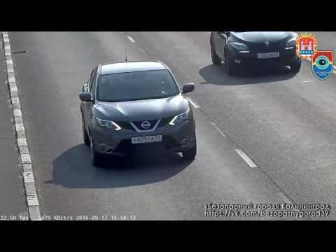 Камеры сняли спасение котёнка из-под колёс на проезжей части