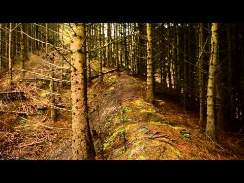 Mountain Bike News - Once Upon A Trail - Adam Brayton