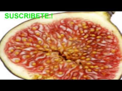 EXTERMINA en minutos la Diabetes, colesterol, úlceras estreñimiento, triglicéridos y mas
