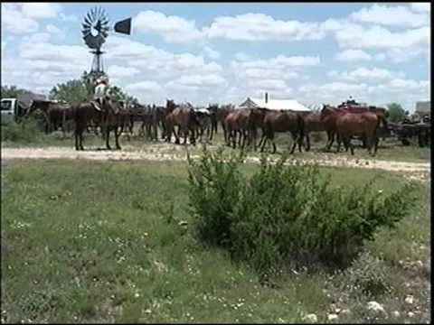 A Day in the Life of a West Texas Cowboy