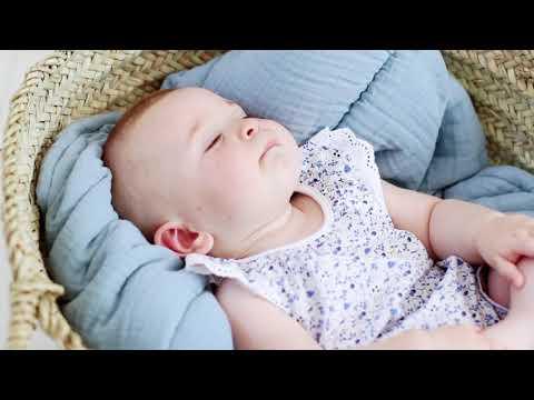 Neuf : Tee-shirt brodé PETIT BATEAU 3 mois bleu à fleurs pour bébé fille