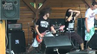 Live (Toxic Party 2012)