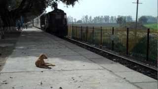 Garhmukteshwar India  city photos gallery : INDIAN RAILWAYS Amritsar Saharsa Garib Rath behind LDH 18884 WDM3A at Garhmukteshwar