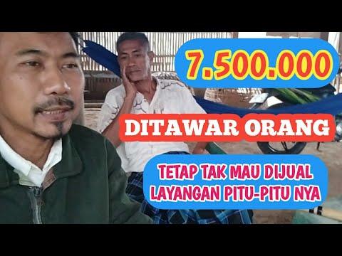 Ditawar 7,5 juta Layangan Pitu-pitu Bugis nya pak Saleh Tak Mau Dijjual