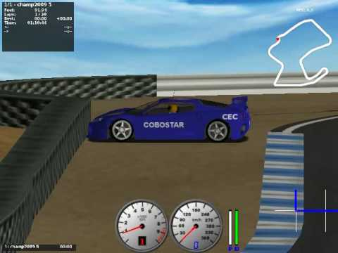 Simulated Racing - Highlights from the Simulated Car Racing Competition at CEC-2009 for the driver COBOSTAR.