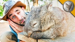 DON'T WAKE the WOMBAT?! by Brave Wilderness