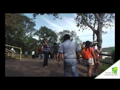 EN LAS CATARATAS DE IGUAZU - BRASIL