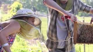 Ellie Symes, IU School of Public and Environmental Affairs graduate student, explains her love of beekeeping, and how she...