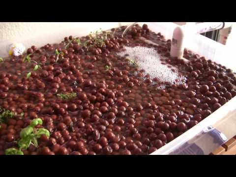 Sielsie Home Aquaponics Quick Animation Youtube