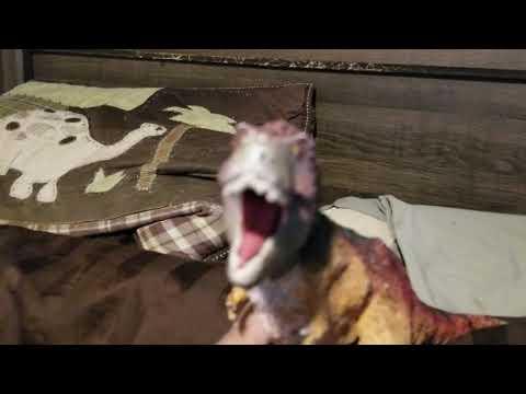 Godzilla and rexy season 7 episode 30 tyrant in oc island