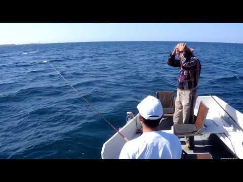 ловля в черном море с волнорезов