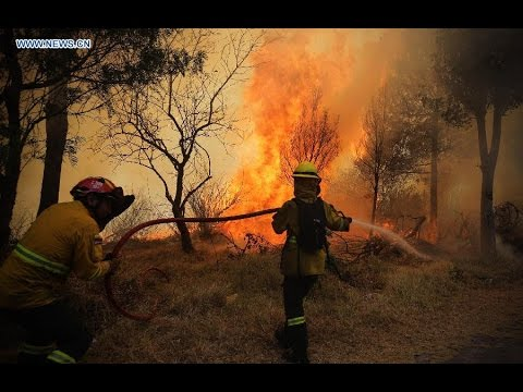 Indonesia asks international help to extinguish forest fires