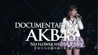 Nonton        5 Documentary Of Akb48 No Flower Without Rain Akb48         Film Subtitle Indonesia Streaming Movie Download