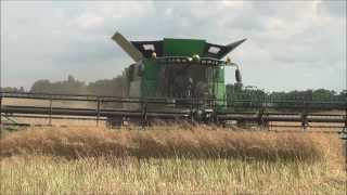 Hopkinsville (KY) United States  city images : Direct Cut Winter Canola Harvest, Hopkinsville, KY