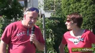 #1328 Sabine Rebers Gartentipp - Teppich statt mulchen
