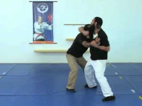 Video of Krav Maga- Strikes