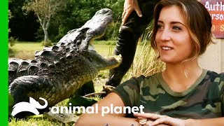 Alligator Catch Inspires A New Volunteer To Join The Everglades Holiday Park | Gator Boys by Animal Planet