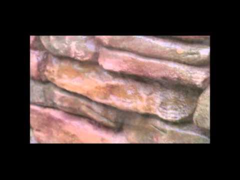 Štampani zidovi