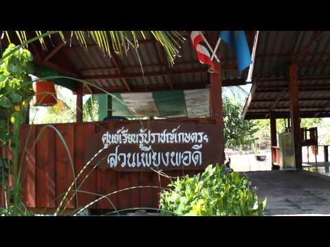 ตรีผลา - http://thairayong.com/ สวนเพียงพอดี(21/04/57) เขาภูดร-ห้วยมะหาด ท่องเที่ยวเรียนรู้เชิงเกษตร บ้านฉาง ระยอง...