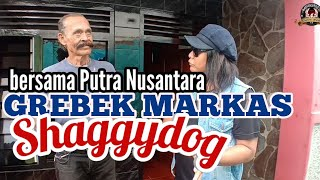 Video GREBEK MARKAS SHAGGYDOG || BERSAMA PAK SANTO PUTRA NUSANTARA || MP3, 3GP, MP4, WEBM, AVI, FLV Maret 2019