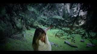 Amerfolk - El lobo