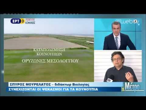 Άρχισαν οι ψεκασμοί για τα κουνούπια στη Ροδόπη | 04/05/2020 | ΕΡΤ