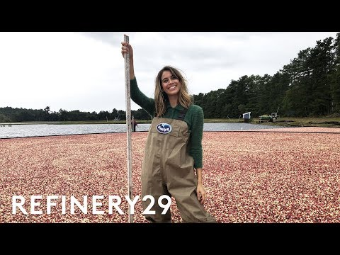 I Worked As A Cranberry Farmer For A Day | Lucie For Hire | Refinery29