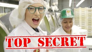 Video HOW BEAN BOOZLED IS MADE! MP3, 3GP, MP4, WEBM, AVI, FLV November 2018